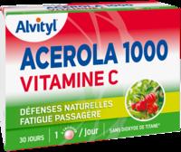 Govital Acerola 1000 à Bordeaux