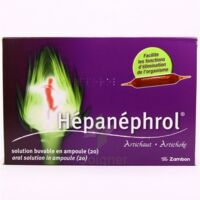 HEPANEPHROL, solution buvable en ampoule à Bordeaux