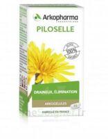 Arkogélules Piloselle Gélules Fl/45 à Bordeaux
