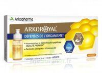 Arkoroyal Défenses Naturelles Gelée Adulte 7 Doses/10ml à Bordeaux