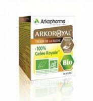 Arkoroyal 100% Gelée Royale Bio Gelée Pot/40g à Bordeaux