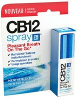 CB 12 Spray haleine fraîche 15ml à Bordeaux
