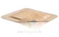 Mepilex Border Pansement hydrocellulaire stérile 17,5x17,5cm B/10 à Bordeaux