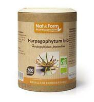Nat&form Eco Responsable Harpagophytum Bio Gélules B/90 à Bordeaux