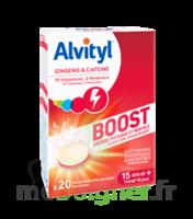 Alvityl Boost Comprimés B/20 à Bordeaux
